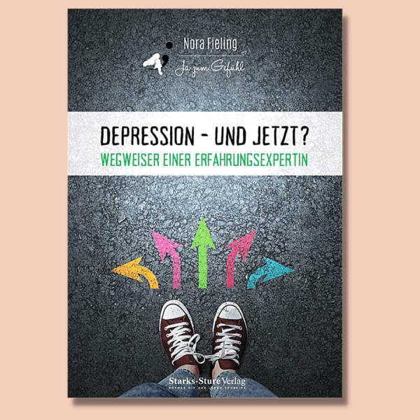 Buch Depression und jetzt? Wegweiser einer Erfahrungsexpertin